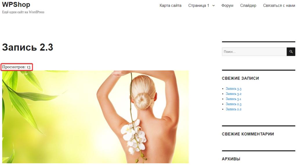 Пример страницы сайта со счетчиком просмотров
