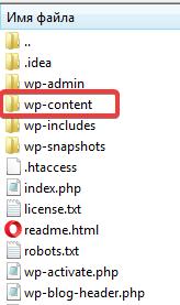 Каталог wp-content на хостинге
