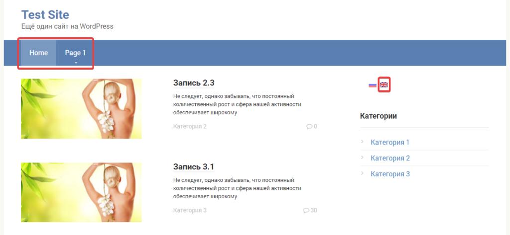 Выбор языка на главной странице сайта