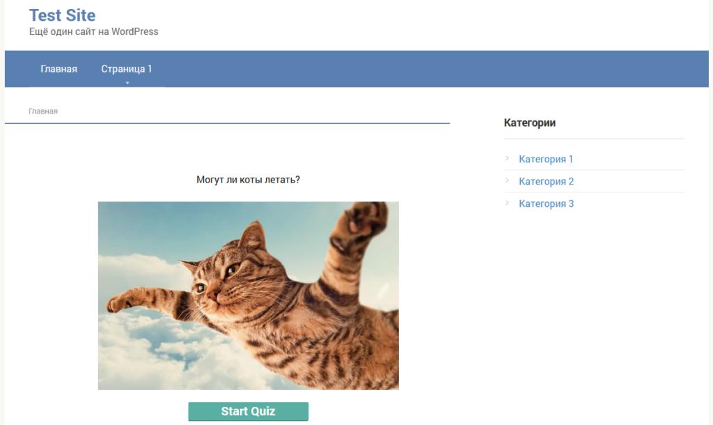 Тест с помощью плагина Quiz Cat – WordPress Quiz Builder
