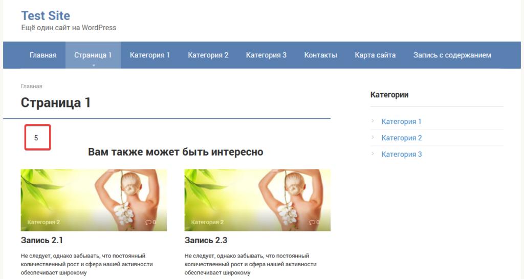 Страница на сайте с общим количеством записей