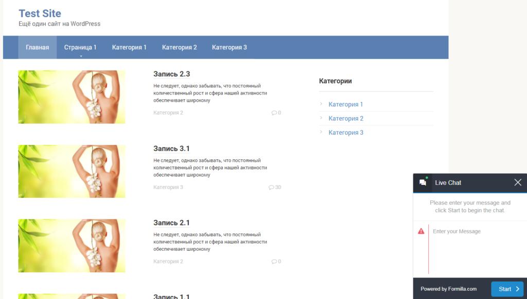 Главная страница сайта с онлайн чатом плагина Live Chat by Formilla – Real-time Chat Plugin