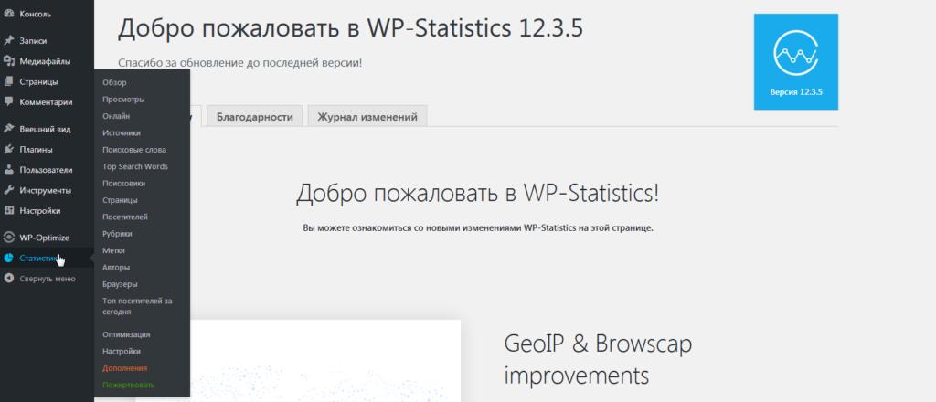 Статистика просмотров в плагине WP Statistics