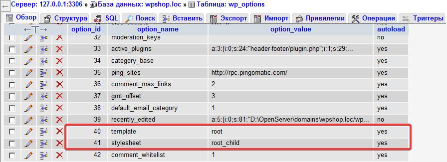Таблица wp_options