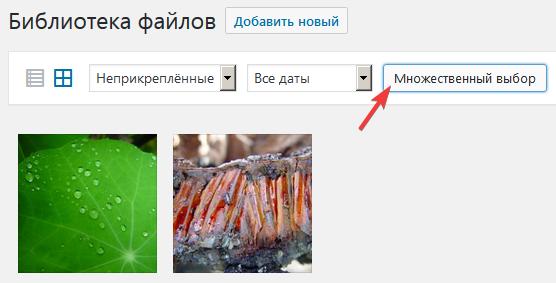 Множественное удаление изображений в Медиабиблиотеке