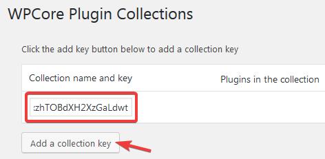 Вставка ключа коллекции в плагине WPCore Plugin Manager