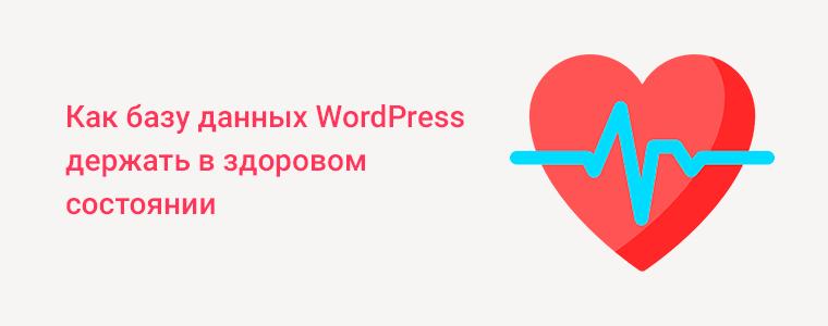 Поддержка работоспособности базы данных WordPress