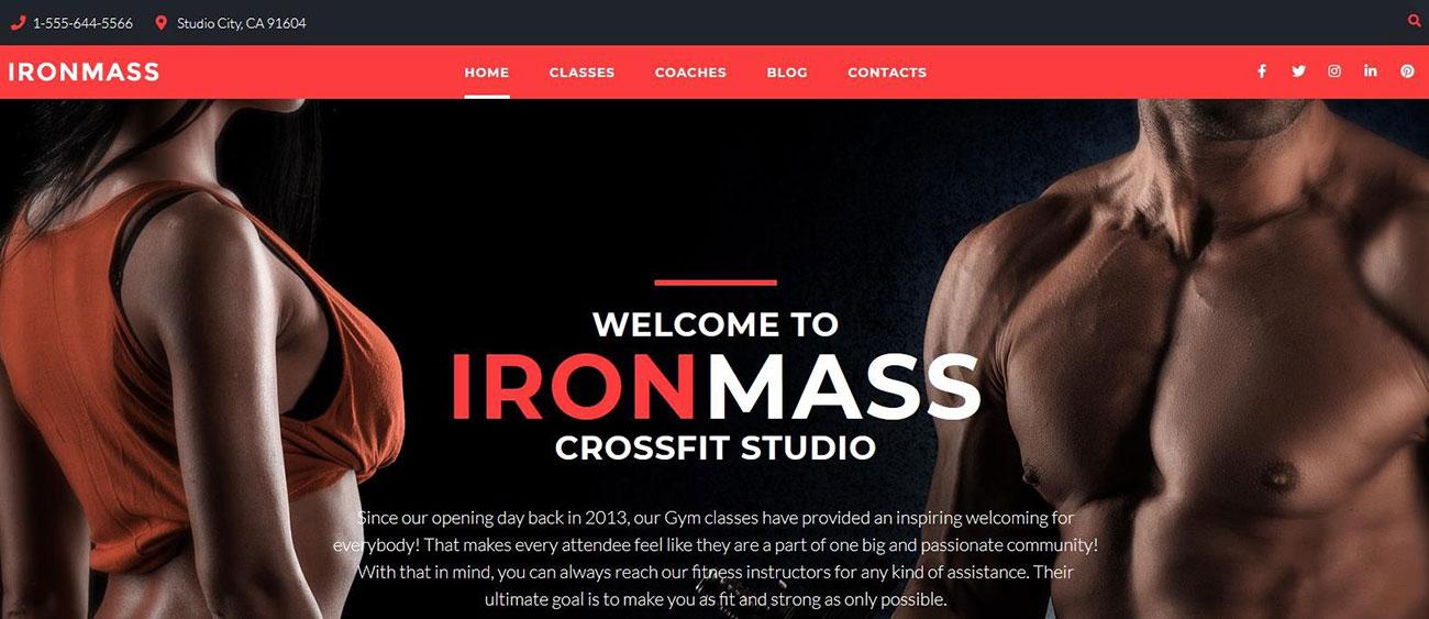 Демо-сайт с темой IronMass